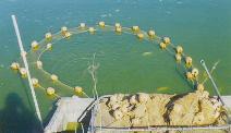 About dunns fish farm for Dunn fish farm